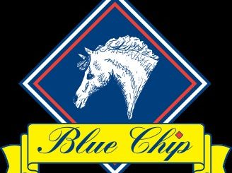 bluechip logo 328x245 - Home School Challenge winners chosen as Blue Chip collaborate with easibed for challenge 8