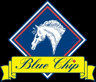 bluechip logo - Home School Challenge winners chosen as Blue Chip collaborate with easibed for challenge 8