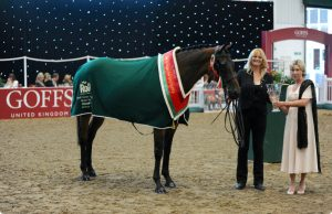 ror champ 1 300x194 - RoR drawing up plans for online classes in place of cancelled National Championships