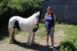 Buttercup new home  300x200 - 'Happy Ever After' for skeleton-to-show-winner rescue pony