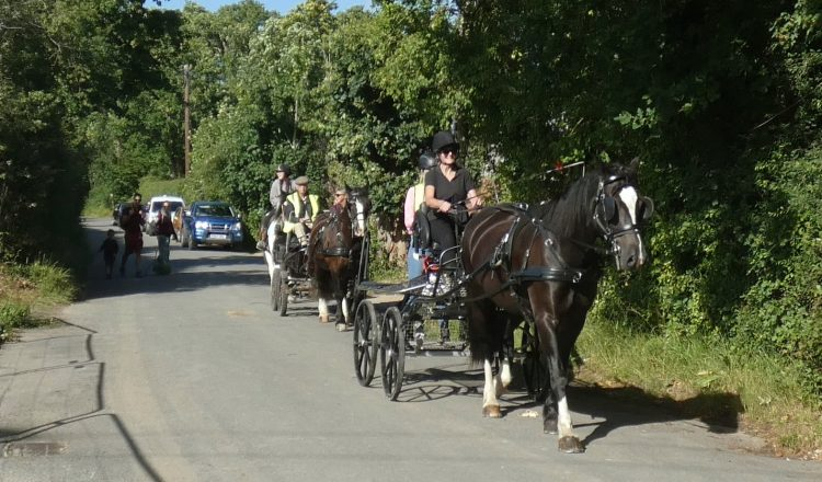 carriage driving in Sussex