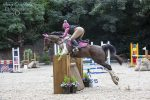 Tru Beevers Babylon Taccas Mars 2nd 95cm 150x100 - Yorkshire Equestrian Centre
