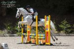 Wendy Yates Jack 2nd 65cm Horses 150x100 - Yorkshire Equestrian Centre