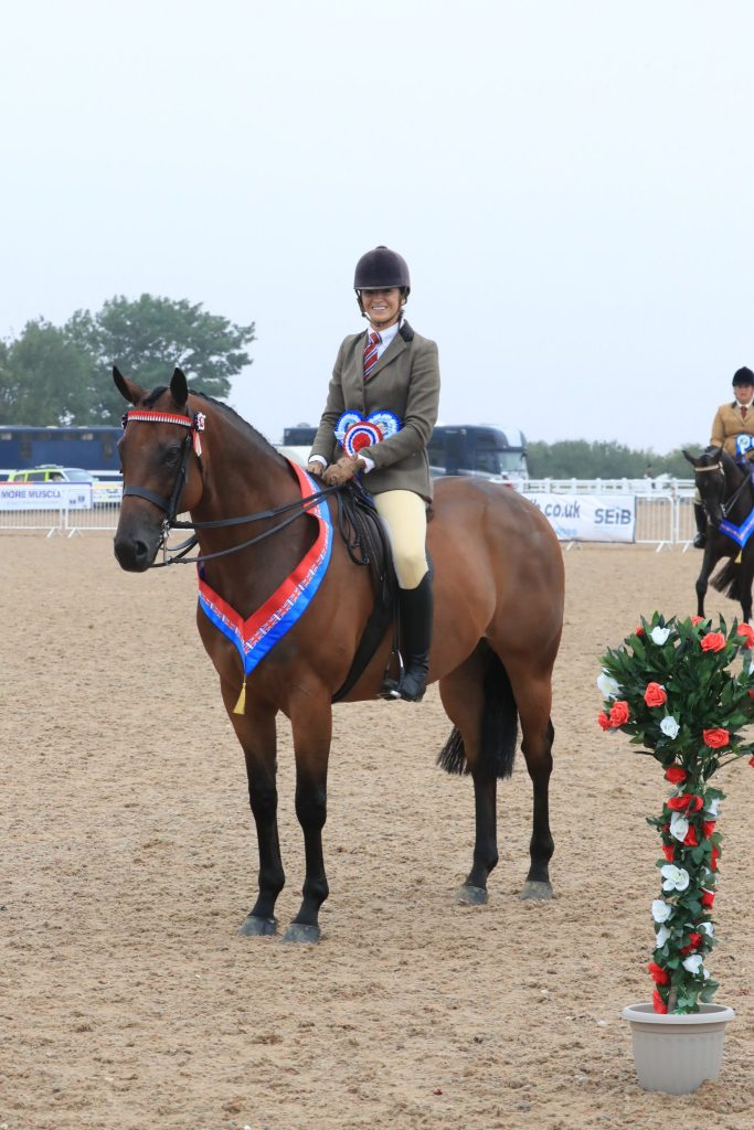 Bobby McGoldrick and Mumford C Equinational 683x1024 - Mumford takes the SEIB Racehorse to Riding Horse Championship at UK National Championships