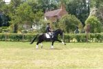 Carl in field on Uthopia 150x100 - Carl Hester : Keeping busy during lockdown