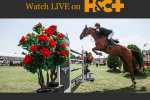 Falsterbo 150x100 - Watch Fantastic Coverage of Falsterbo Horse Show Live on Horse & Country