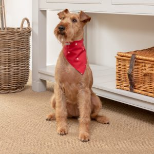 Neckerchief Cranberry Stars6 300x300 - Mutts and Hounds, 'pawfect' products for hound and home now available in Harrods