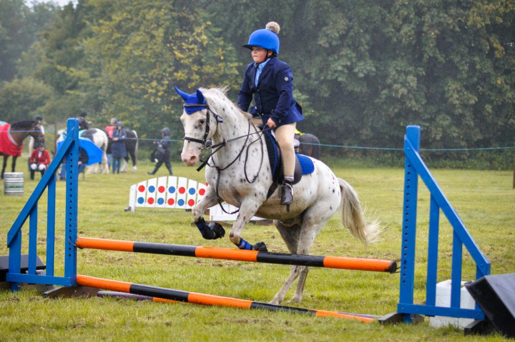 Sam Richardson Target 1024x680 - Hallamshire Showjumping 16th August