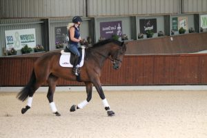 young horse Zara and Sadie on ecotrack 300x200 - Carl Hester : Keeping busy during lockdown