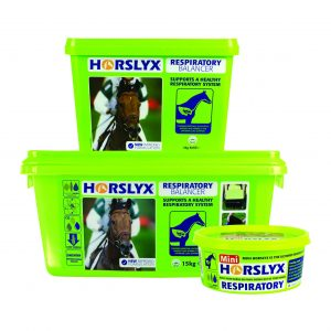 Horslyx Respiratory Balancer in three sizes 300x300 - Support your horse's health this winter with Horslyx Respiratory Balancer