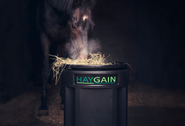 Hg square image low res 360x245 - Charotte Dujardin and Haygain team up over shared priorities.