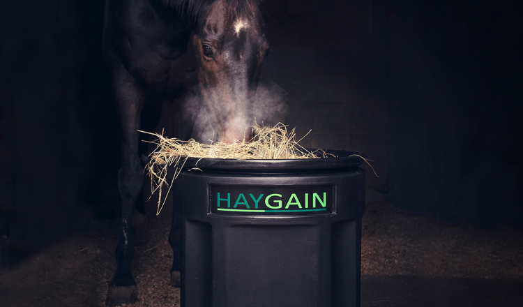 Hg square image low res 750x440 - Charotte Dujardin and Haygain team up over shared priorities.