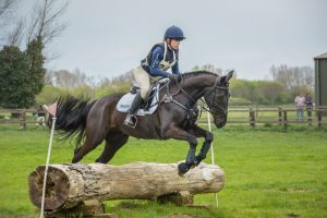 thumbnail 1 300x200 - The importance of insurance with Petplan Equine