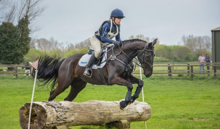 thumbnail 1 750x440 - The importance of insurance with Petplan Equine
