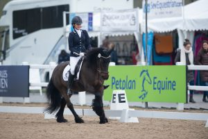 DSC0320 002 300x200 - The importance of insurance with Petplan Equine