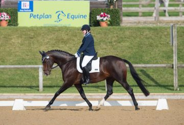 DSC 3852 002 360x245 - The importance of insurance with Petplan Equine