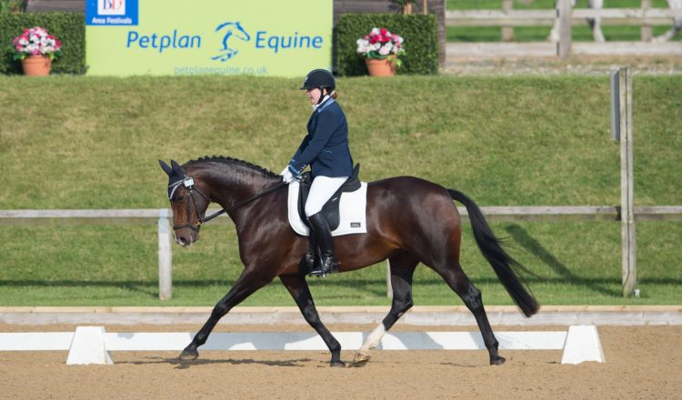 DSC 3852 002 750x440 - The importance of insurance with Petplan Equine