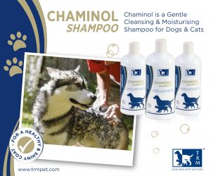 TRM Pet Chaminol Shampoo 3 300x250 - Horse owners and stockists can now add pet nutrition and care products to their Equine Products UK order