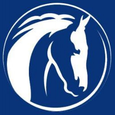 World Horse Welfare logo - Equine charity looks at the horse-human partnership and considers 'What's in it for the Horse'?