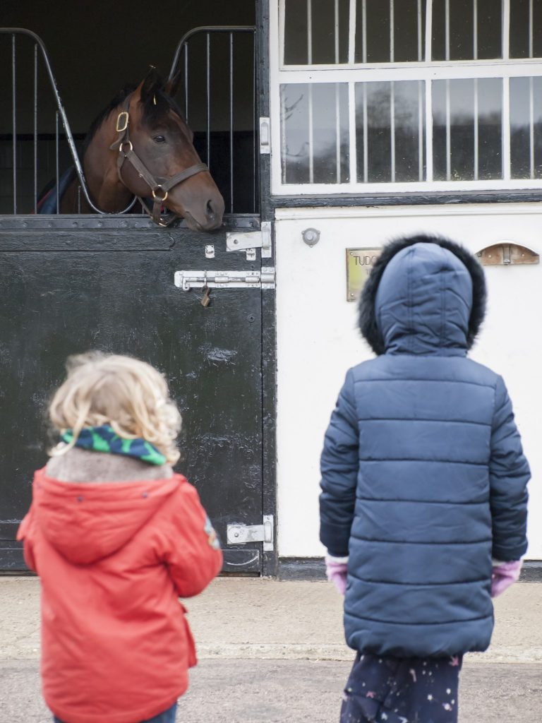 Children enjoying family visit to The National Stud on one of Discover Newmarkets Guided Tours PLEASE CREDIT Discover Newmarket 768x1024 - National Stud tours go under starter's orders