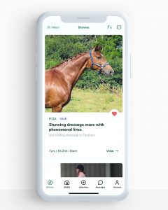browse view white background 240x300 - Technology startup launches new website to disrupt horse selling sites