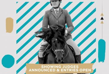 show judges 600 400 360x245 - Entries Open and Judges Confirmed for the first BSPS Showing Classes at Bolesworth