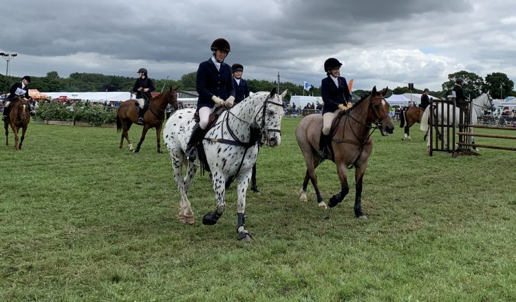 IMG 2825 750x440 - The Royal Cheshire County Show