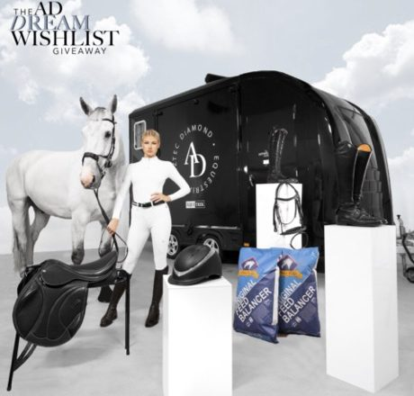 """DW 11 copy 460x440 - Aztec Diamond Equestrian are proud to announce """"The Dream Wishlist Giveaway"""""""